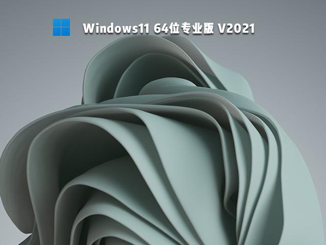 Win11专业版下载微软最新 Win1164位专业版下载