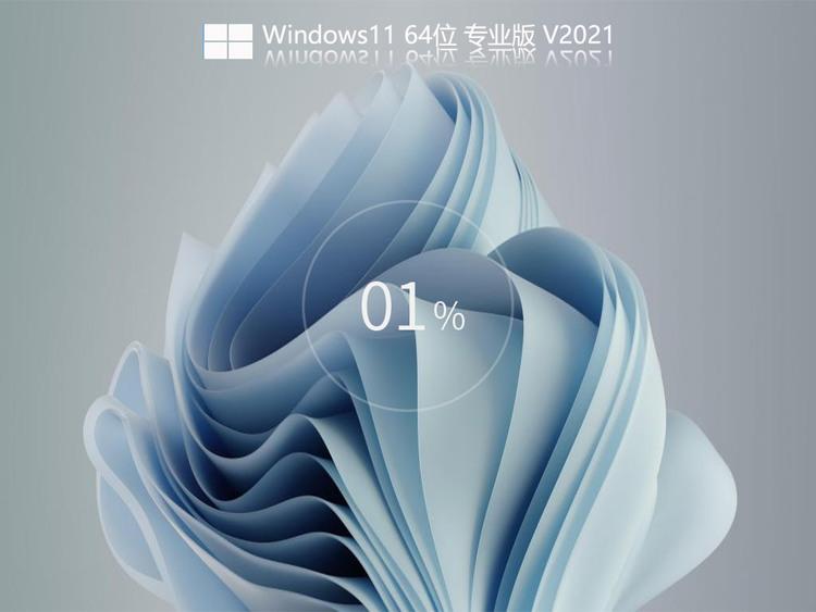 全新Windows1122000.120专业纯净版V2021.08