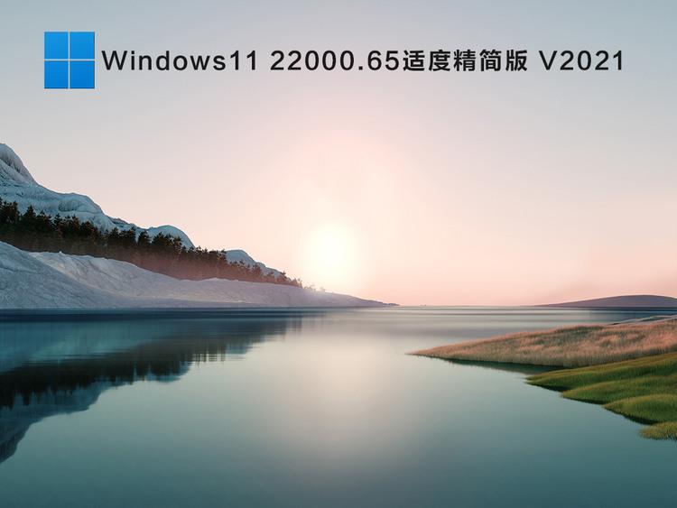 Windows1122000.65适度精简版 V2021