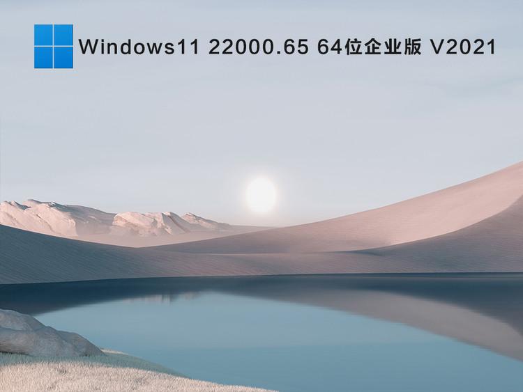 Windows1122000.6564位企业版V2021
