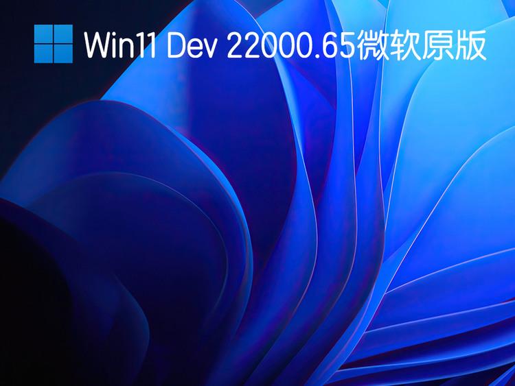 Win11Dev22000.微软原版V2021