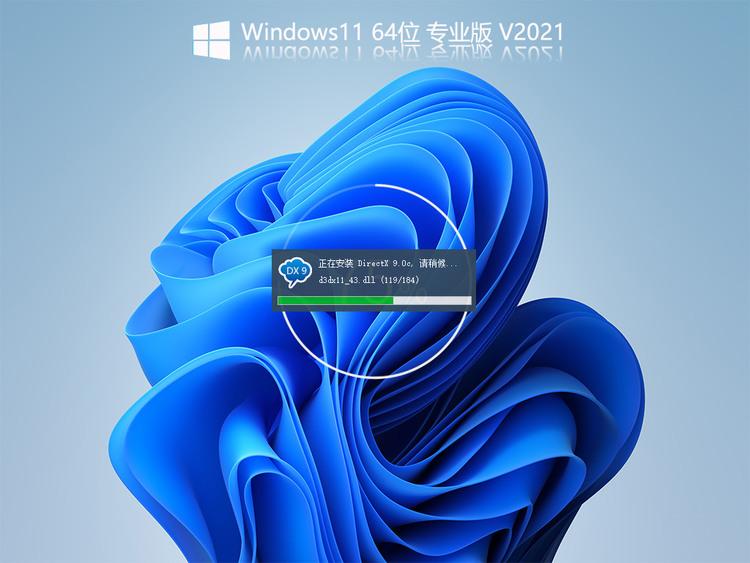 Windows11InsiderPreview10.0.22000.51简体中文专业版V2021