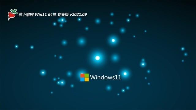 萝卜家园Win11 稳定装机版64位V202109