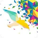 一个奇鸽app