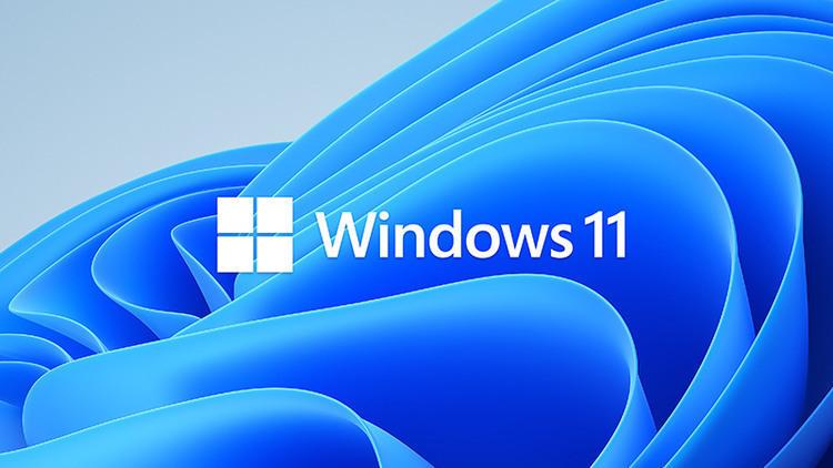微软Windows11官网正版64位系统 V202107