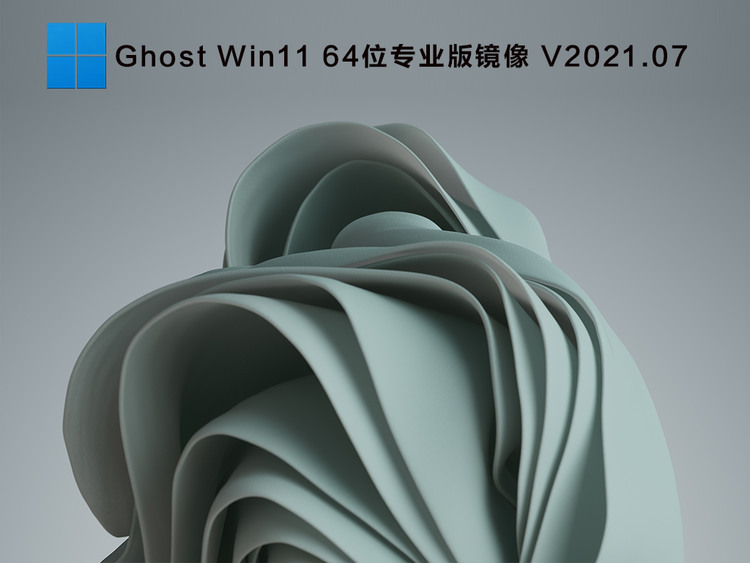 Ghost Win11 64位专业版镜像 V2021.07