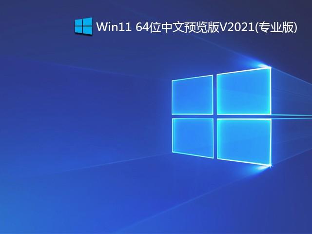 Win11 64位中文预览版 V2021(Build10.0.22000.51专业版)